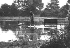 Cornish John in flooded hotel garden